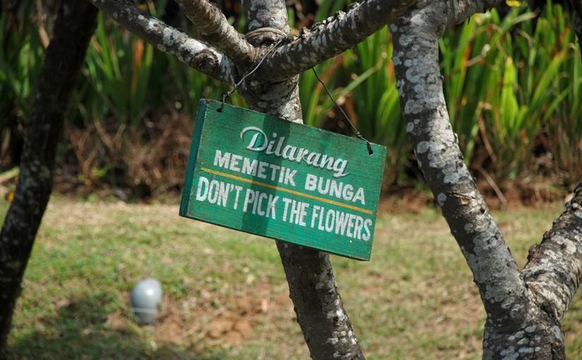 """Baum mit """"Don't pick the flowers' - Schild als Symbol für balinesische Kultur"""